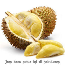 isi-durian