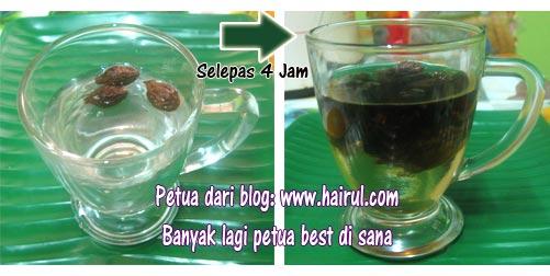 khasiat kembang semangkuk